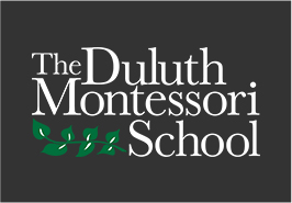 Duluth Montessori School
