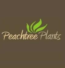 Peachtree Plants