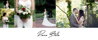 Diana Bello Studio LLC